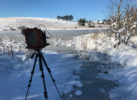Bellows Camera in the Snow