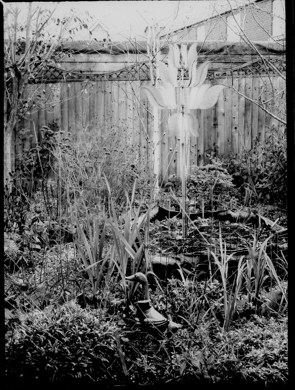HalfPlate-photo-Garden1