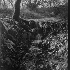 X-ray film - Mendip Priddy Pool overflow