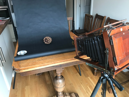 Still life with a bellows camera