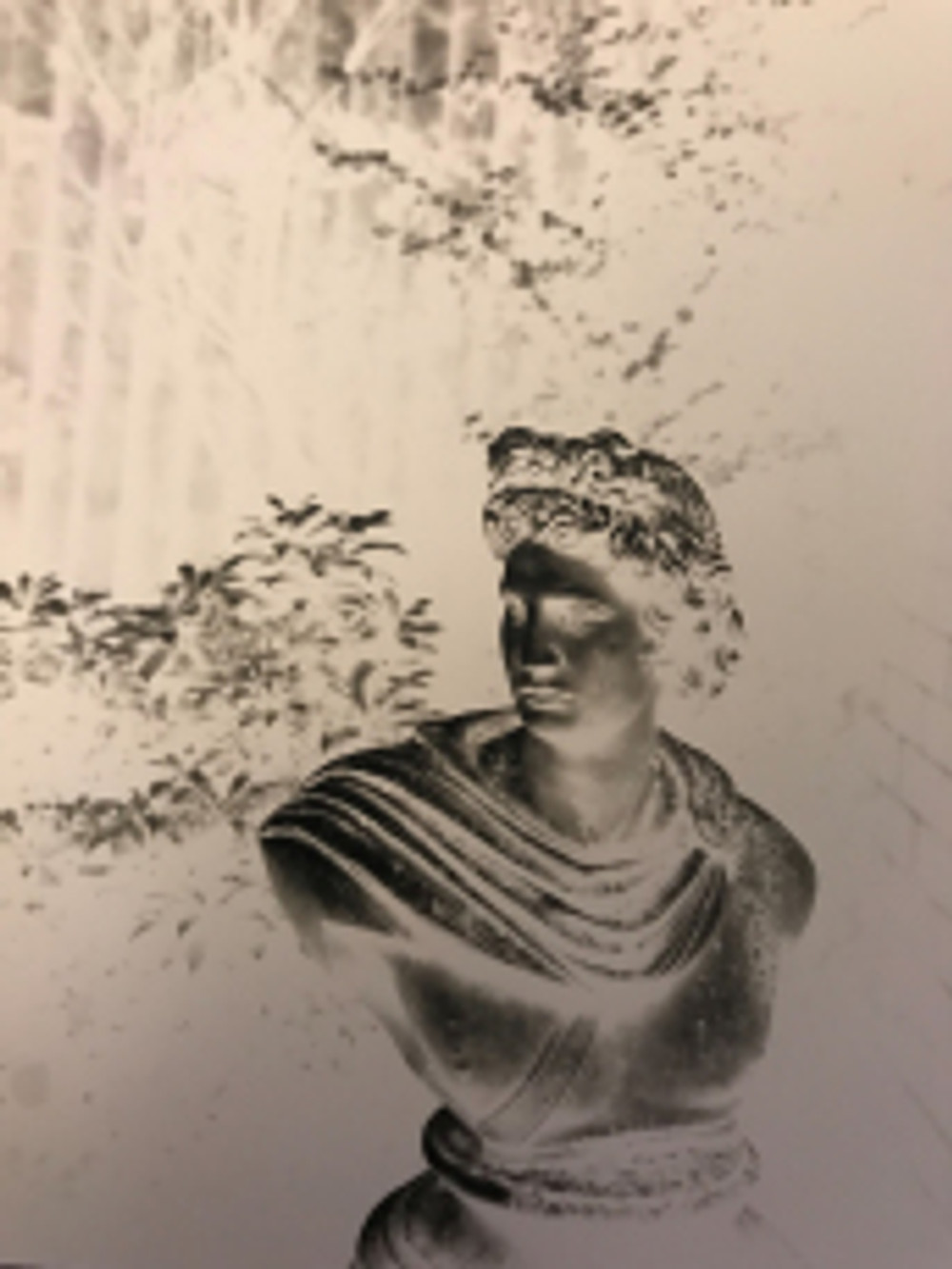 half-plate-classical_bust_negative