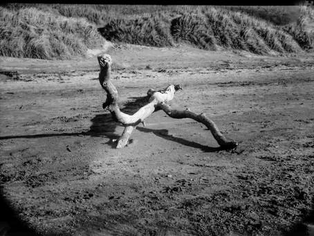 Mastering Exposure – Vintage Camera