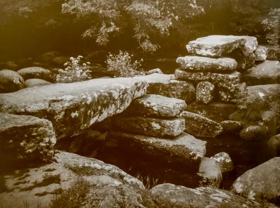 Dartmeet-7x5Xray~Film-100YearOldCameraThirntonPickardImperial1.jpg