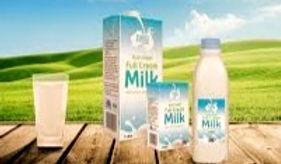 milk_edited_edited.jpg