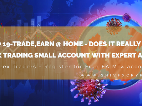 Covid 19-Trade,Earn @ home - Does it really work? Forex Trading Small Account With Expert Advisor