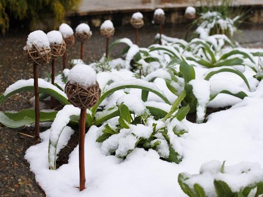 3月下旬の雪