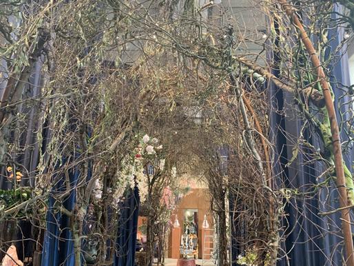 インテリアと植物の調和を考える〜オランダ視察レポート〜
