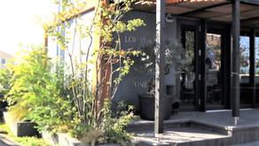 植物のある暮らしって、どんな感じ?お庭を暮らしに取り入れた、楽しみ方をご紹介。