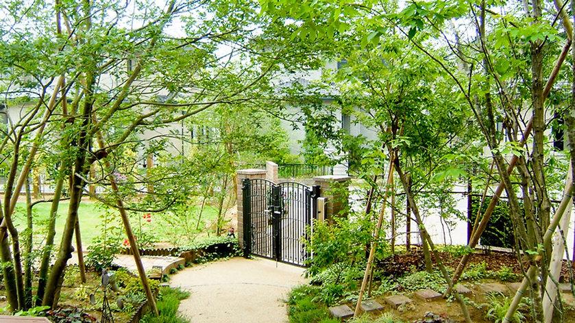 季節を楽しめるように落葉樹を多めに植え、目隠しの部分のみに常緑樹を配置 <千葉市 K様邸>