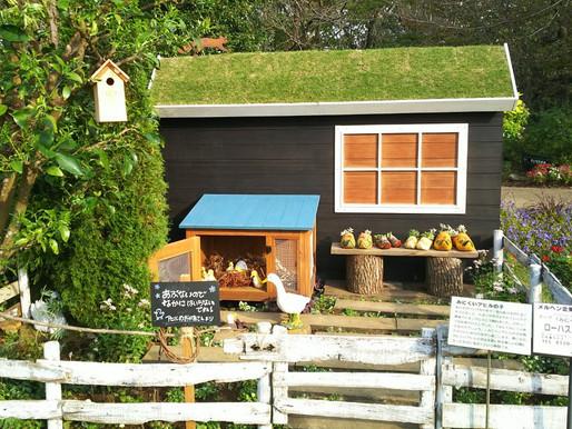 ふなばしアンデルセン公園で話題!ロハスガーデンズのユニークな花壇「みにくいアヒルの子」