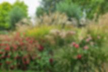 オランダの庭