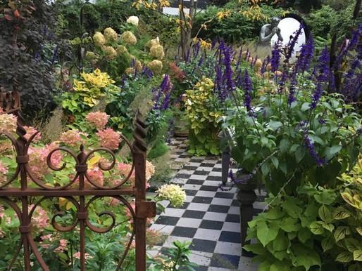 オランダ・ベルギー ~溢れる花と植物の文化~