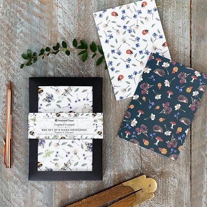 Explore & Treasure - Set of 8 Mixed Notecards