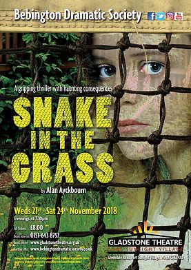 Snake-In-The-Grass-rgb.jpg