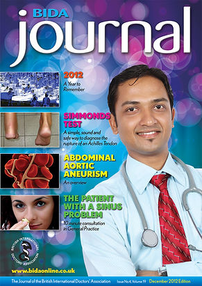 BIDA-Journal-Dec2012-Cover-rgb.jpg