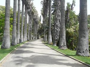 Jardim Botânico Tropical, Lisboa