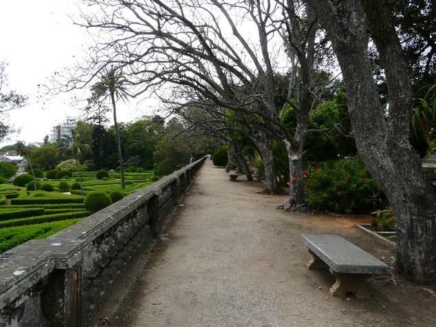 Jardim da Ajuda upper terrace