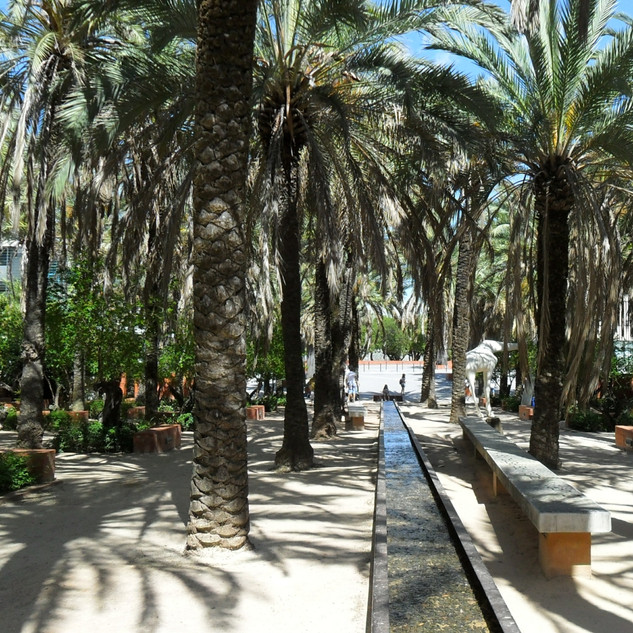 Palm grove - Lisbon Park of Nations