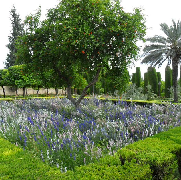 Cordoba Palace gardens