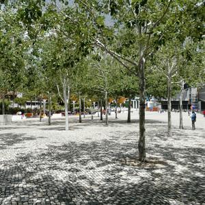 Lisbon Expo shade