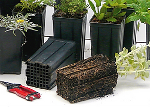 Anti-spiral grid containers