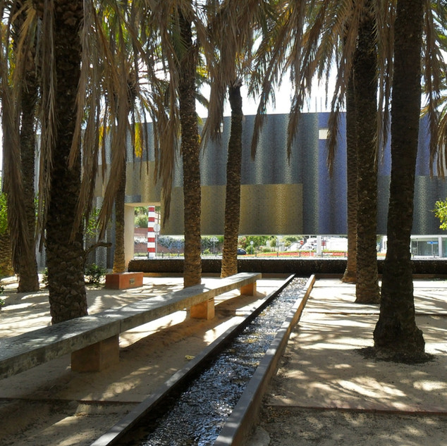 Palm grove and water channels