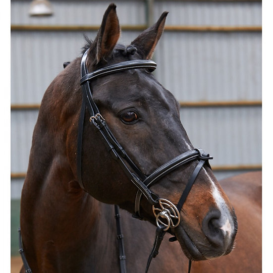 Whitaker Eastwood Bridle