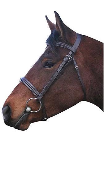 IV Horse Raised Cavesson Bridle