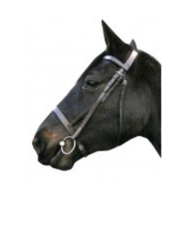IV Horse Plain Cavesson Bridle