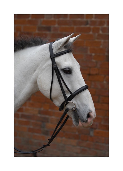 Hy Raised Cavesson Bridle