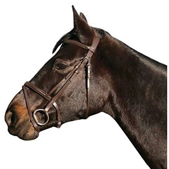 IV Horse Flash Bridle