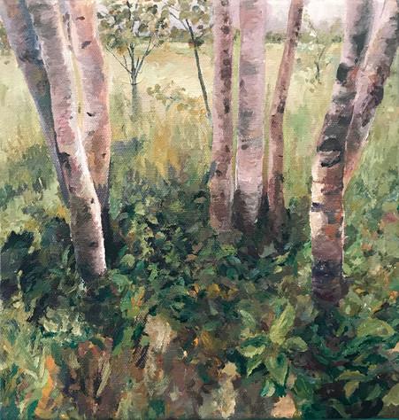 aging-birches.jpg