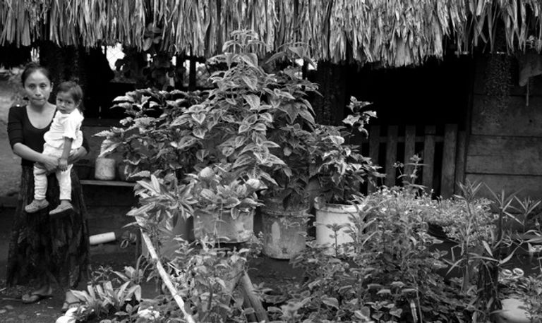 Guatemala2_244.jpeg