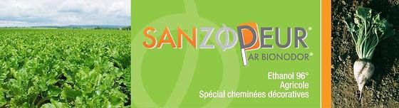 Bioéthanol Bionodor Sans Odeurs