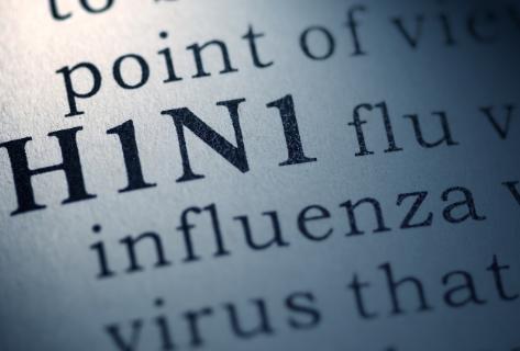 Congressional Briefing: Novel G4 H1N1 Influenza