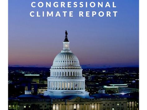 August 2020 ABI Congressional Report
