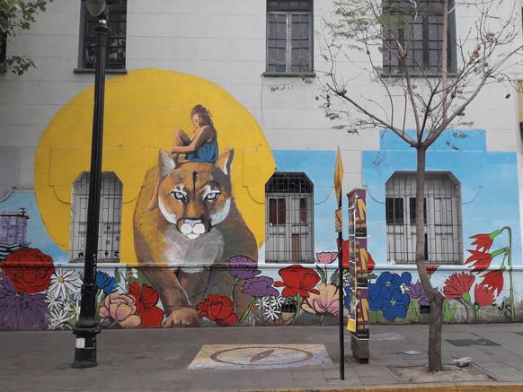 Puma andino y domadora libertad.jpg