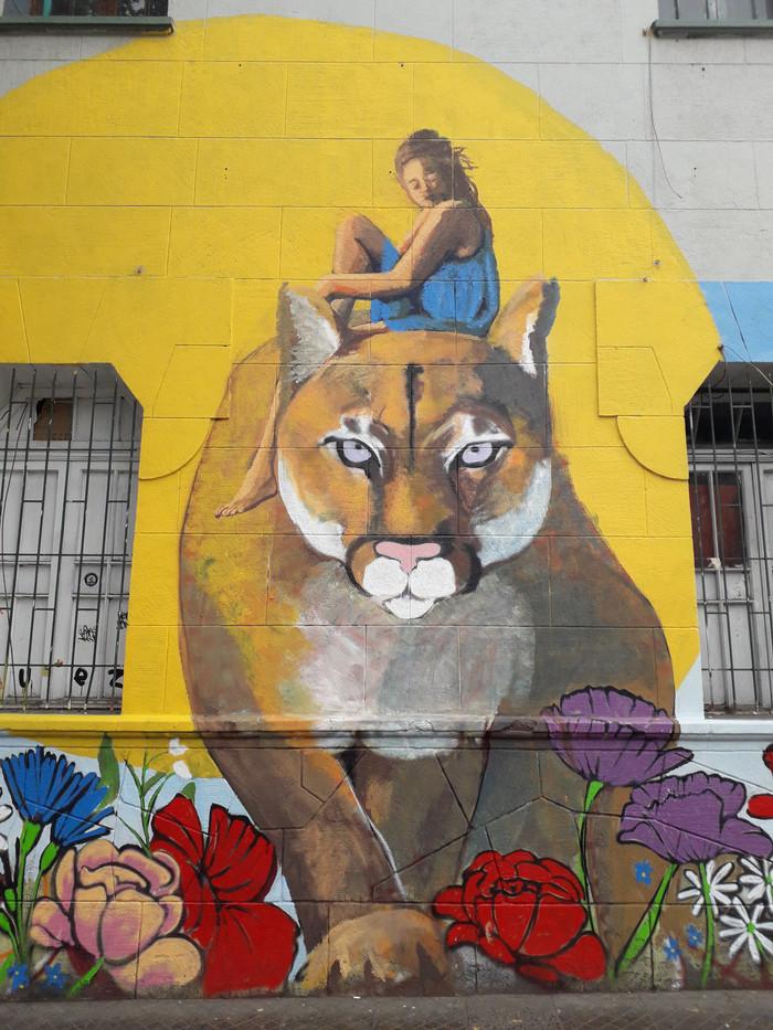 Puma andino y domadora libertad