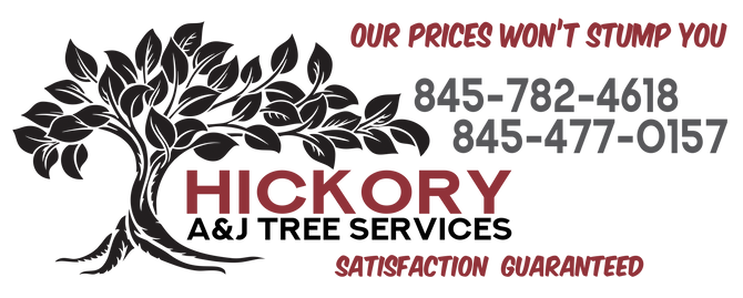 Hickory AJ Tree service.png