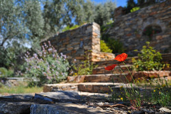 Garden stone steps and features Tomakin
