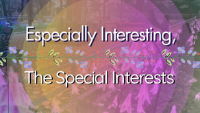 Especially interesting, the special interests.