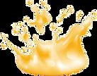 korona-fluid.png