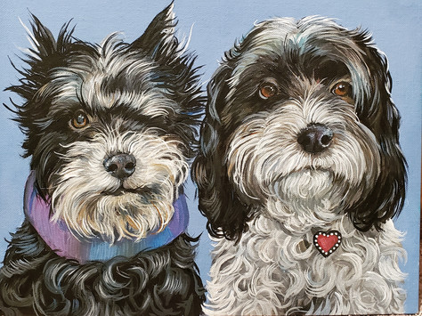 My boo's dogs.