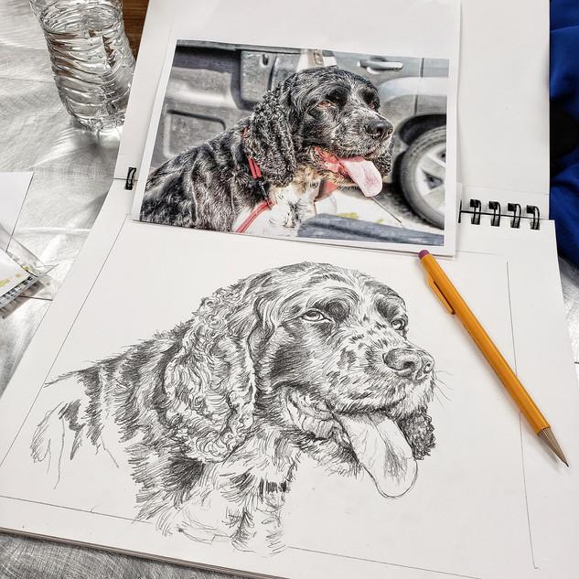 Sketching Skeeter