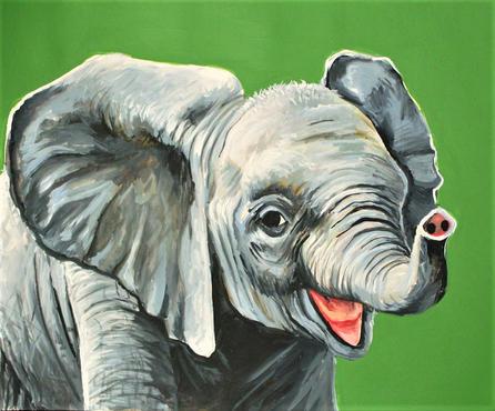 8x10 baby elephant