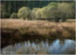 LAKES FRAMED (1).jpg
