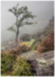 Ogwen Valley in the mist, Snowdonia.