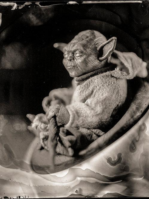 Master Yoda 8x10B