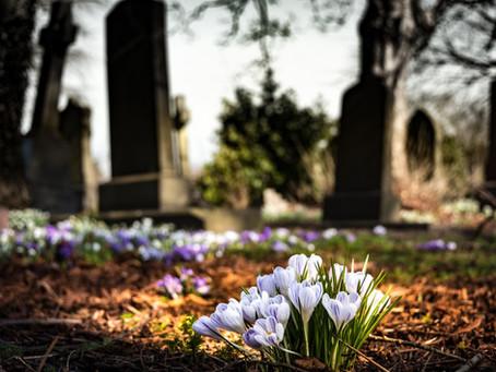 """""""Promoot"""" crematie als duurzamere vorm van teraardebestelling"""