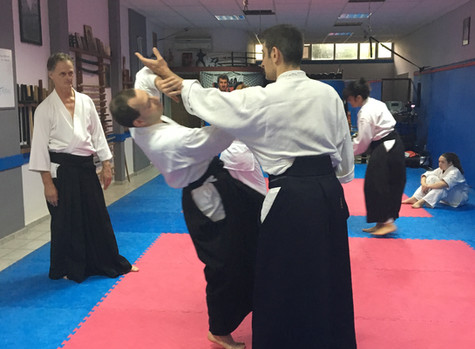 Aikido Training and How it Links to Purpose